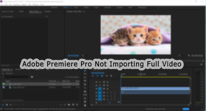 Tech Solution] Adobe Premiere Pro Not Importing the Full Video Clip